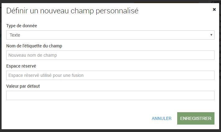champ-personnalise