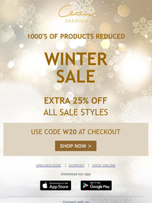 Winter sale Newsletter Template